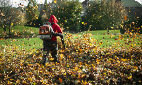 Winter 2019 Lawn Care Tips & Tricks - backpack blower from Y&W Farm Center